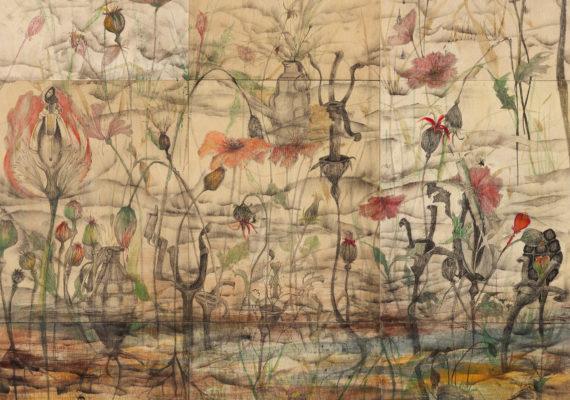 JULIANNE ROSS ALLCORN: Hidden Beauty